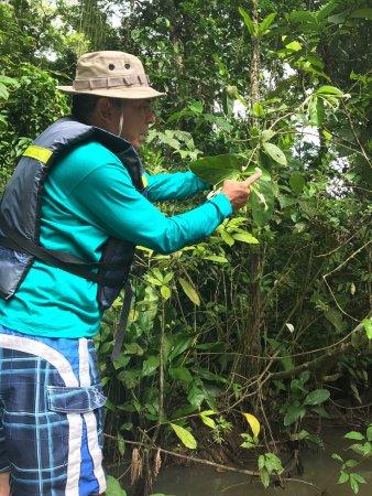 Tortuguero, Costa Rica: photo1.jpg
