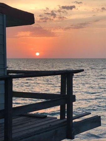 Redington Shores, FL: photo5.jpg