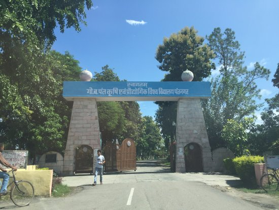 ‪‪Pantnagar‬, الهند: Main entrance to Gobind Ballabh Pant University of Agriculture and Technology‬