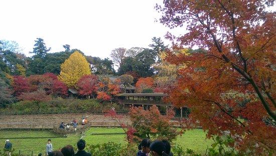 Matsudo, Japan: 懐かしい景色