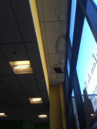 Карпентра, Франция: Le plafond de la cafétéria...