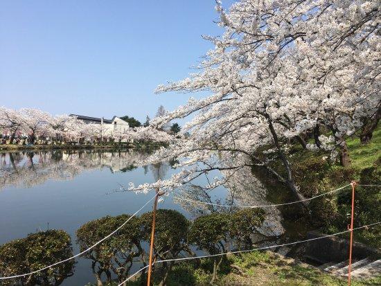 Joetsu, Japón: photo0.jpg