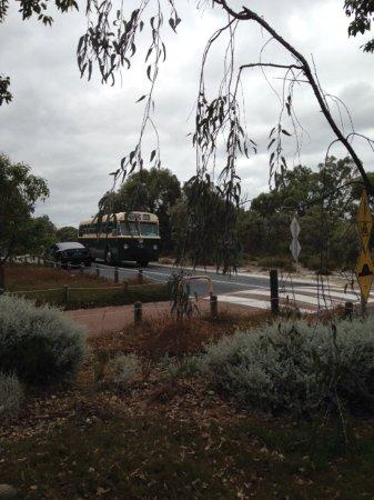 Whiteman, Australien: Vintage bus