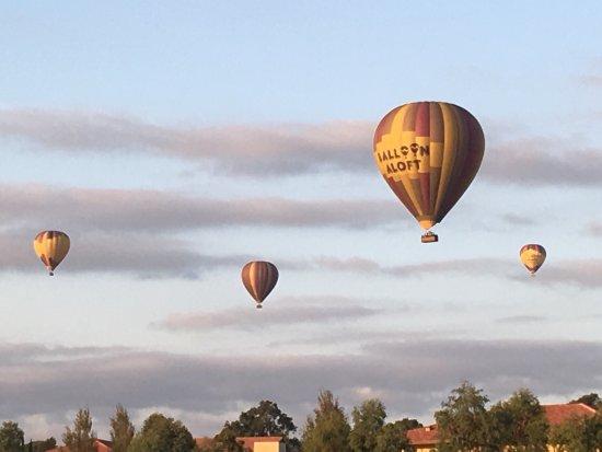 Rothbury, Australia: photo5.jpg