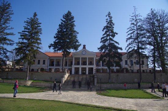 Capriana, Moldova: The Museum