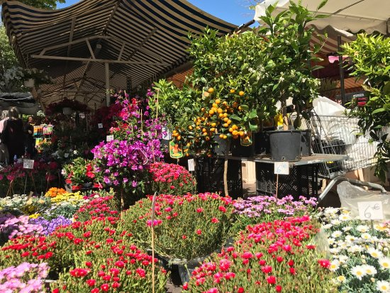 Marche aux Fleurs Cours Saleya (Nice) - 2020 All You Need to Know Before You Go (with Photos ...