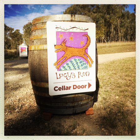 Lovedale, Australia: Lucy's Run!