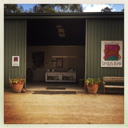 Rothbury, Australia: Welcome to our cellar shed, yes shed!