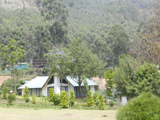 Camp Noel Resmi