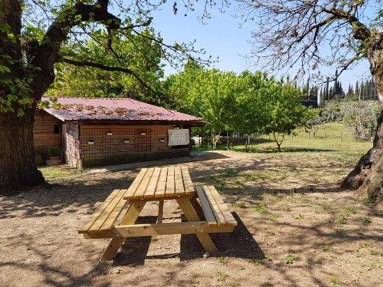 Provaglio d'Iseo, Italia: area picnic