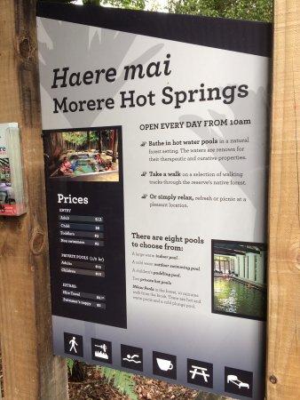 Morere Hot Springs: photo3.jpg