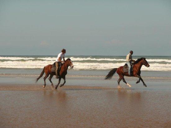 Wild Coast, Südafrika: Horse Riding on the beach