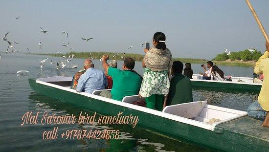 Nal Sarovar Birds Sanctuary: Nal Sarovar Boating Enjoy