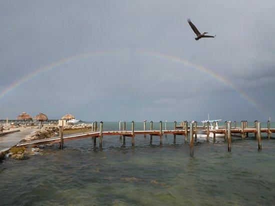 Jolly Roger RV Resort Image