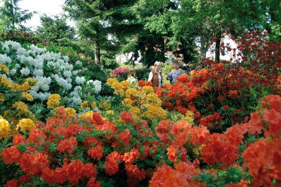 Park of Gardens