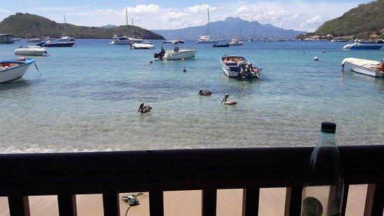 Terre-de-Haut, Guadeloupe: 20170420_135631_large.jpg