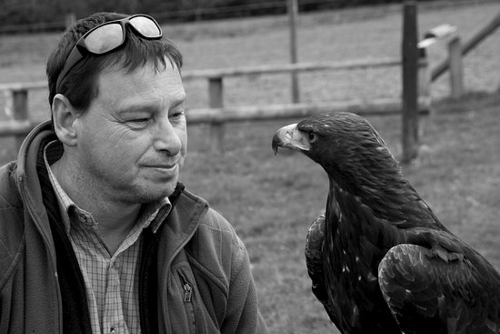 Machynlleth, UK: Barry and the Golden Eagle