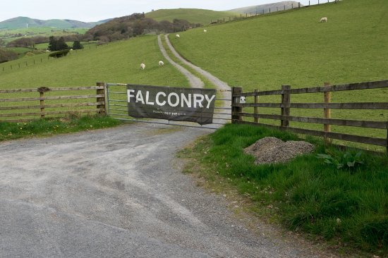 Machynlleth, UK: The entrance to the Falconry Experience