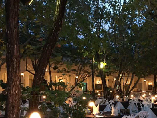 Seagrape Terrace: Outdoor dining