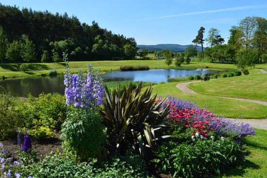 Banchory, UK: View of our Pond and the rolling hills towards Royal Deeside