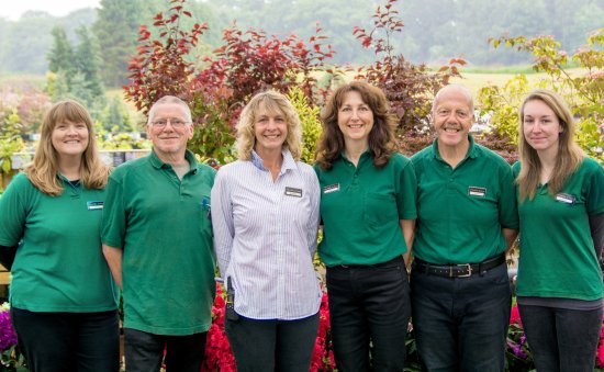 Banchory, UK: Expert Plant Team at The Mains of Drum