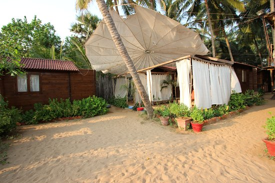 sea star resort updated 2019 prices hotel reviews agonda goa rh tripadvisor com