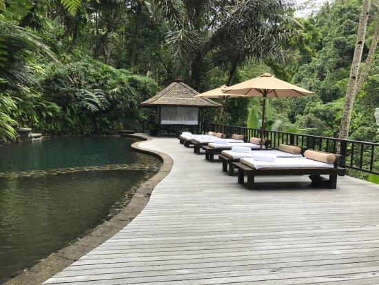COMO Shambhala Estate: Spring pool