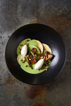 Dornier Bodega: Wild Mushroom Tortellini. Panfried Mushrooms , Pea Cream, Pancetta, Baby Marrow & Ricotta Mousse