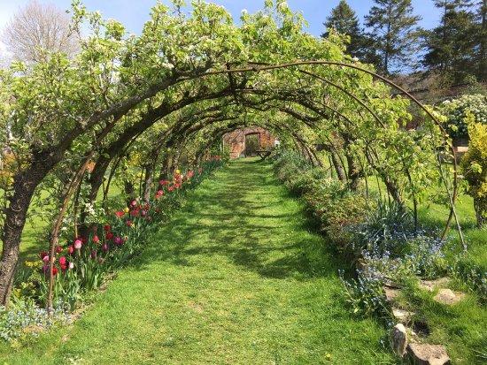 Monastery garden prinknash