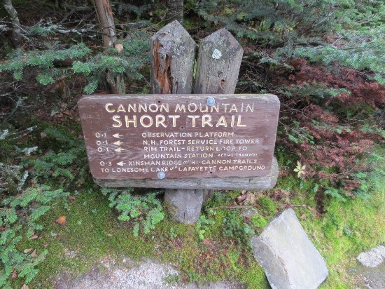 Franconia, Nueva Hampshire: One of the trail markers.