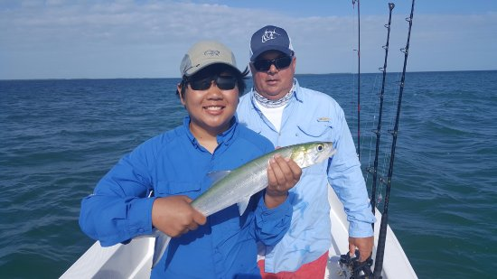 Ramrod Key, FL: Ladyfish in the back-country