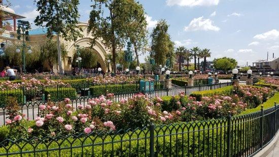 Disney's California Adventure: Califonia Adventure