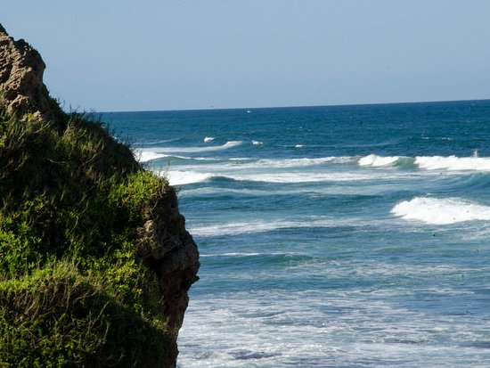 Bluff, South Africa: perfect surfing waters at nearby beach just 2 km from guest house spot dolphins early in the mor