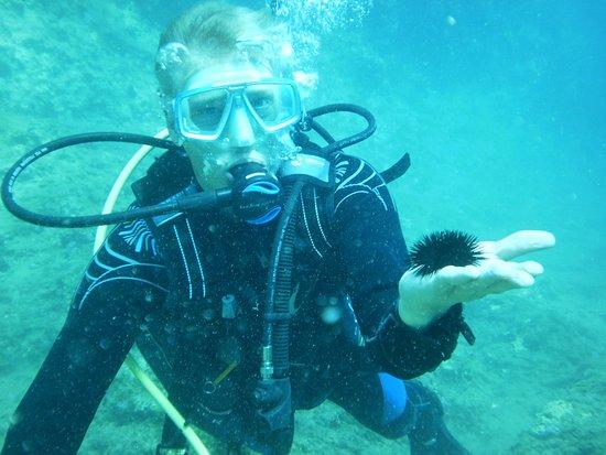 Almyrida, Grecia: Discover Scuba Diving / Chania