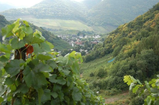 Altenahr, Germany: another small village far below