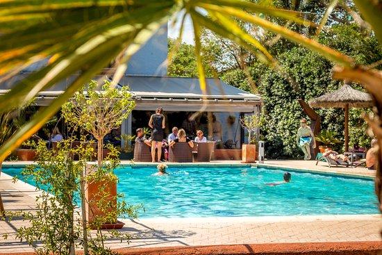 Aquarius restaurant piscine canet plage restaurant avis for Restaurant piscine