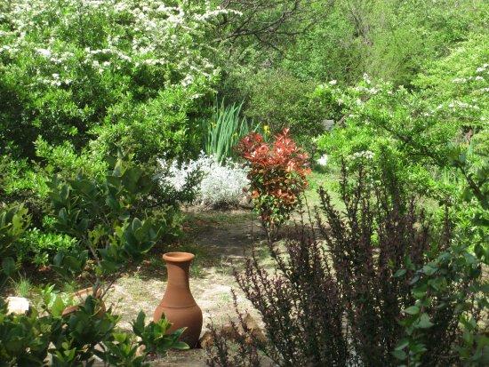 Nono, Argentina: Jardines parquizados