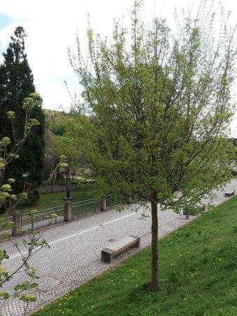 Kloster Eberbach: Gartengelände