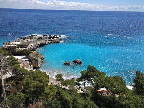 Hotel Weber Ambassador Capri: IMG-20170419-WA0024_large.jpg