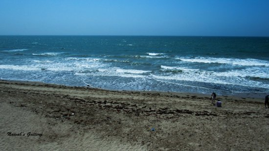 Stunning Water of Sandspit Beach - Picture of Hawks Bay