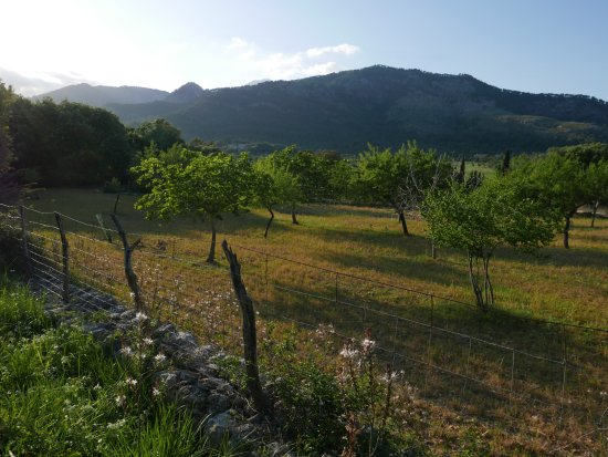 Moscari, Spanien: the walk to the village