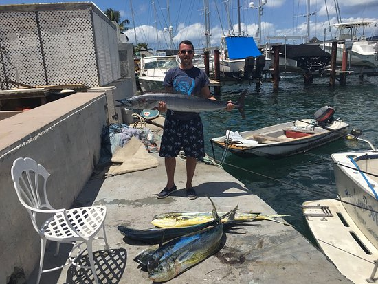 bahía de Simpson, St. Maarten: Amazing fishing. Slammed all day.