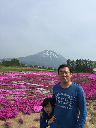 Кутан-чо, Япония: 1492791717786_large.jpg