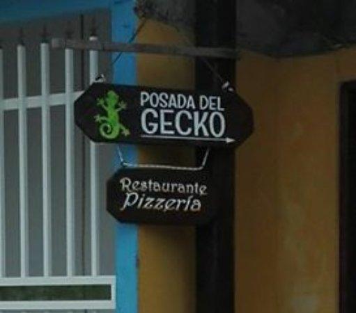 Foto de Posada del Gecko
