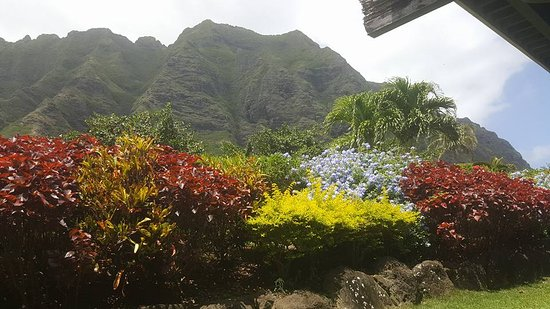 Kaneohe, Hawái: View from the Main Building of the Ranch