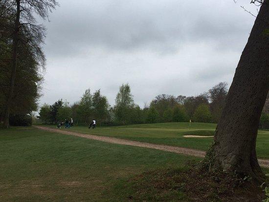 Badgemore Park Golf Club: photo0.jpg