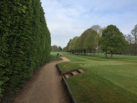 Badgemore Park Golf Club: photo1.jpg