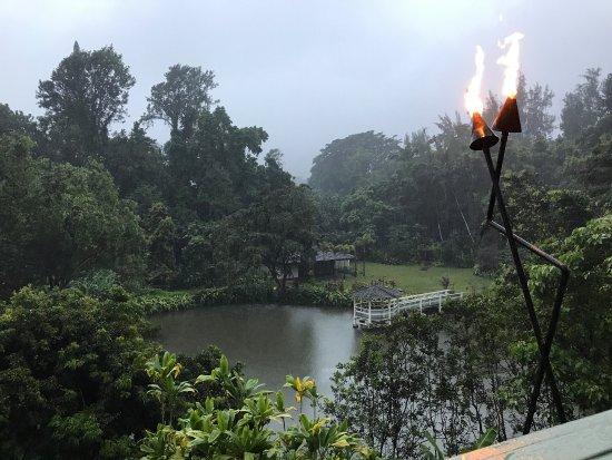 Haleiwa Joe's: photo2.jpg