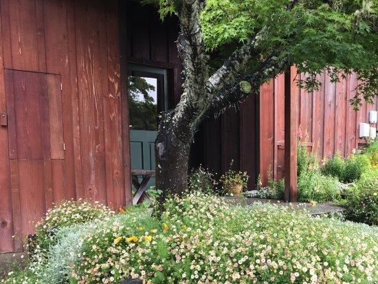 Olema, CA: Front doorway