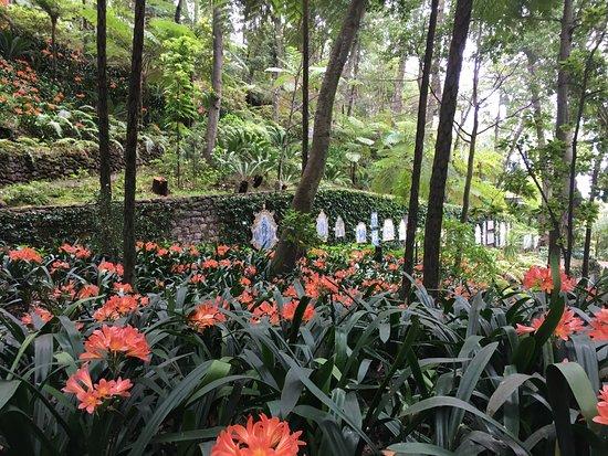 Monte Palace Tropical Garden : photo3.jpg